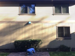 Windows, Doors, Skywalls and Videos Gallery: Window Fellas, Windows, Doors & Skylights Replacement, Sales, Consultations, Repair & Installation in Seattle WA